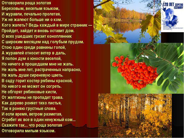 Отговориларощазолотая Березовым, веселым языком, И журавли, печально пролет...