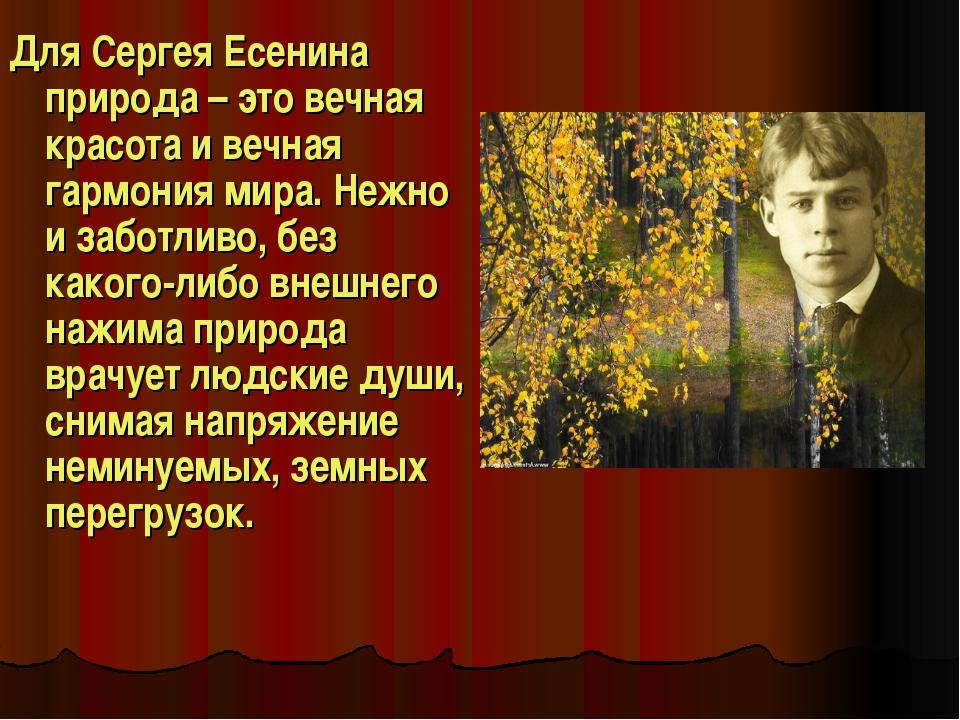 Для Сергея Есенина природа – это вечная красота и вечная гармония мира. Нежно...