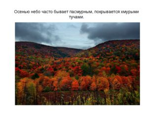 Осенью небо часто бывает пасмурным, покрывается хмурыми тучами.