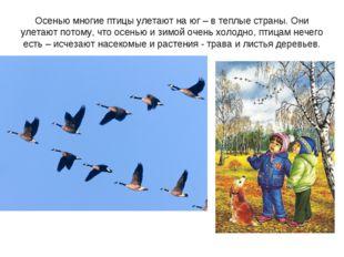 Осенью многие птицы улетают на юг – в теплые страны. Они улетают потому, что