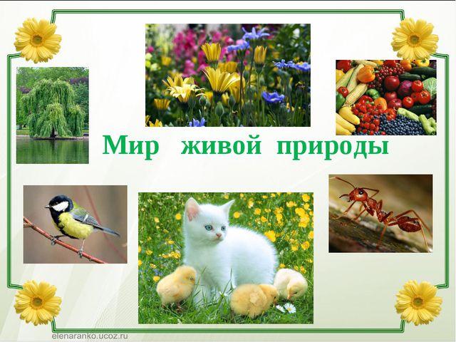 Мир живой природы