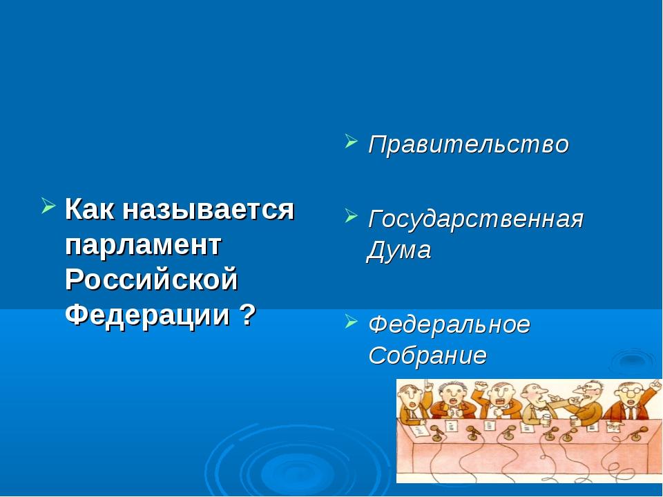 Как называется парламент Российской Федерации ? Правительство Государственная...
