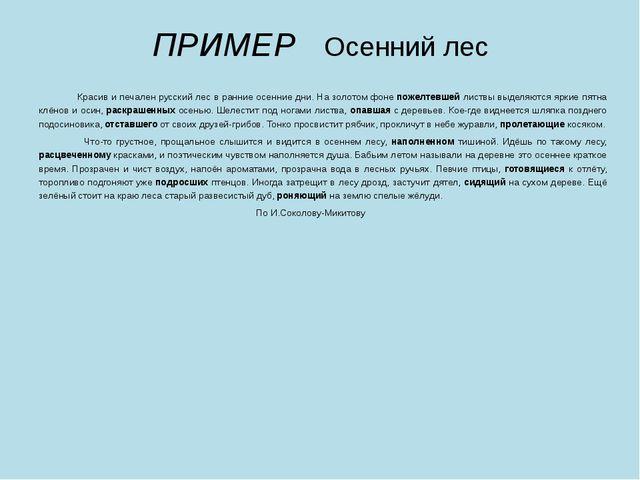 ПРИМЕР Осенний лес   Красив и печален русский лес в ранние осенние дни. На...
