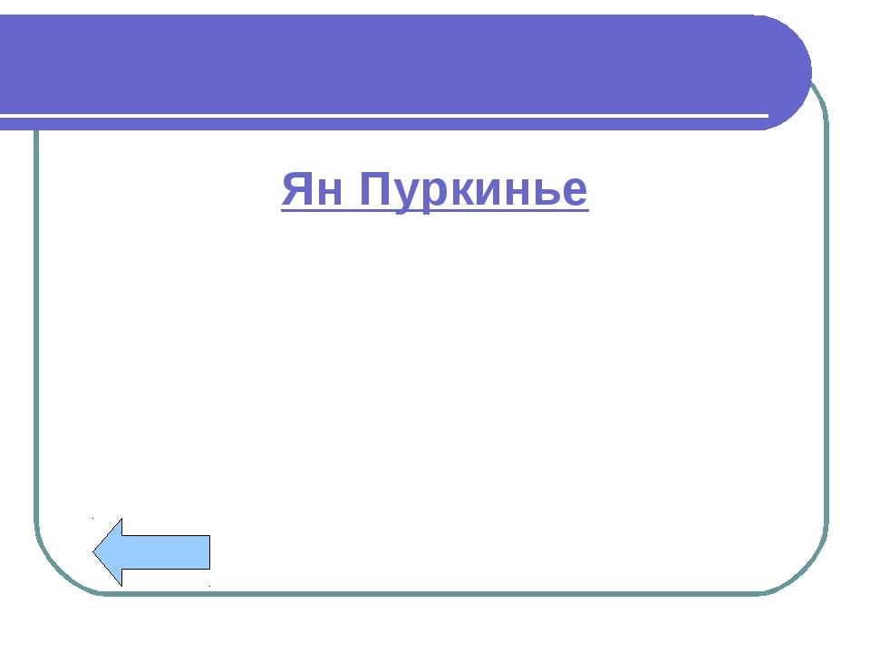 Ян Пуркинье