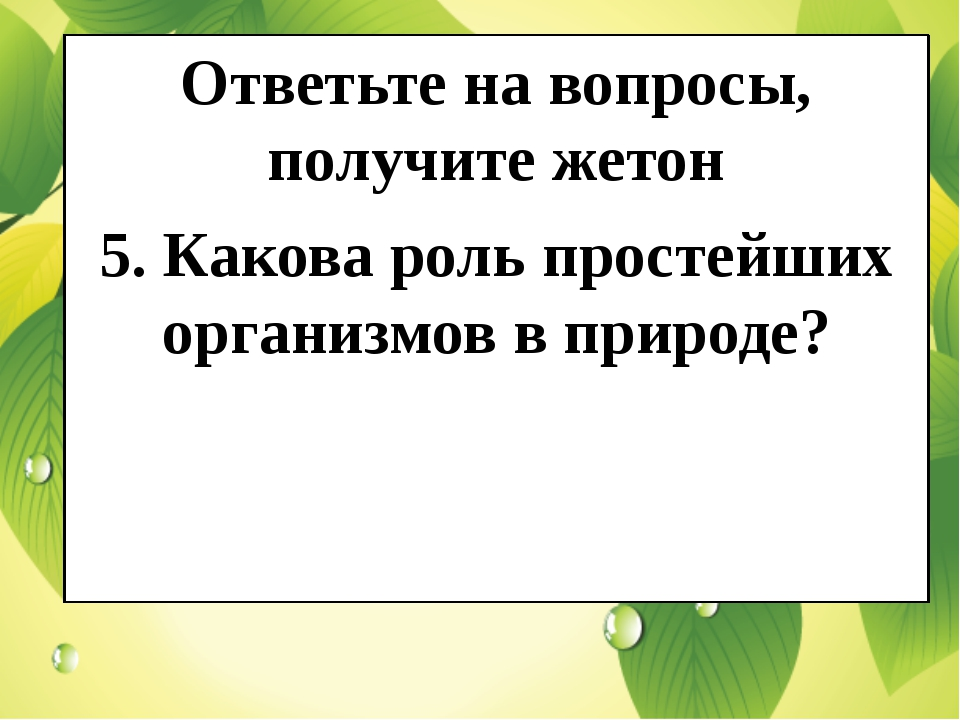 Ответьте на вопросы, получите жетон 5. Какова роль простейших организмов в п...