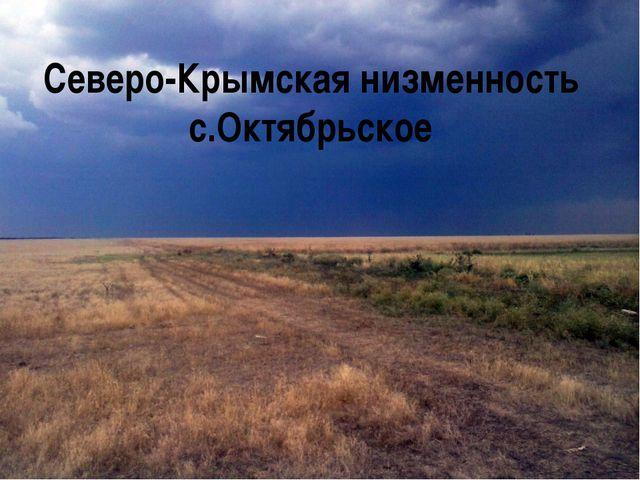 Северо-Крымская низменность с.Октябрьское