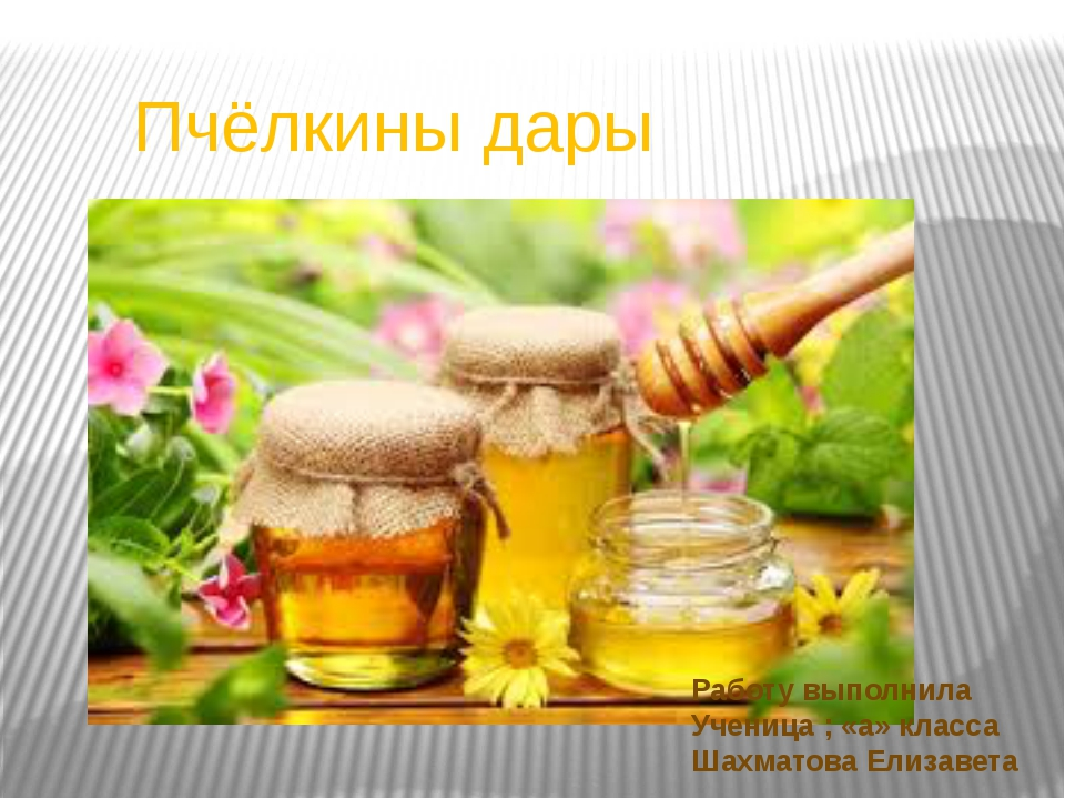 Пчёлкины дары Работу выполнила Ученица ; «а» класса Шахматова Елизавета