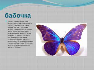 бабочка Бабочки очень красивы! Они бывают разных цветов и оттенков. Бабочки с