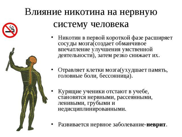 Влияние никотина на нервную систему человека Никотин в первой короткой фазе р...