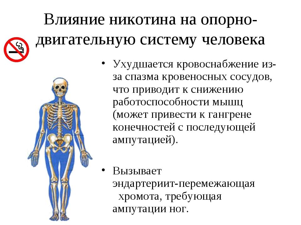 Влияние никотина на опорно-двигательную систему человека Ухудшается кровоснаб...