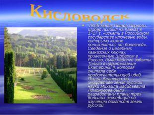 Лейб-медик Петра Первого Шобер прибыл на Кавказ в 1717 г. «искать в Российск
