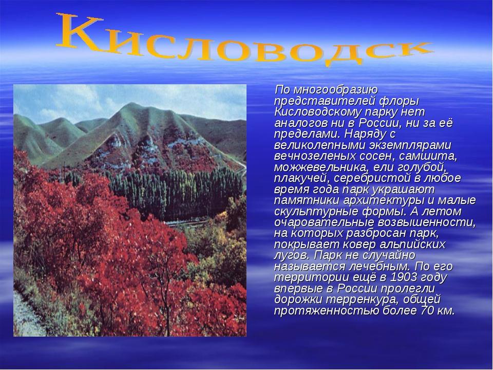 По многообразию представителей флоры Кисловодскому парку нет аналогов ни в Р...