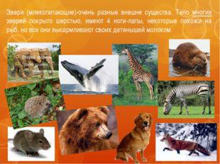 Звери (млекопитающие)-очень разные внешне существа. Тело многих зверей покрыт