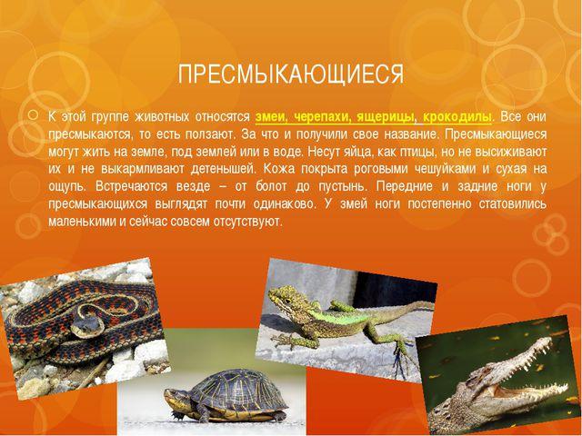 ПРЕСМЫКАЮЩИЕСЯ К этой группе животных относятся змеи, черепахи, ящерицы, крок...