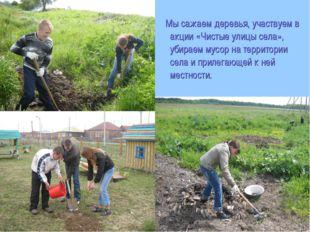 Мы сажаем деревья, участвуем в акции «Чистые улицы села», убираем мусор на т