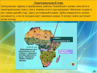 Экваториальный пояс Центральная Африка и прибрежные районы Гвинейского залива