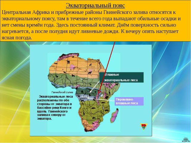 Экваториальный пояс Центральная Африка и прибрежные районы Гвинейского залива...