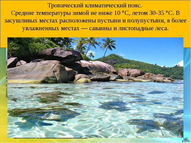 Тропический климатический пояс. Средние температуры зимой не ниже 10 °C, лето...