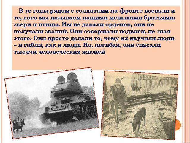 В те годы рядом с солдатами на фронте воевали и те, кого мы называем нашими...
