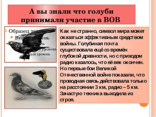 А вы знали что голуби принимали участие в ВОВ Как не странно, символ мира мож...