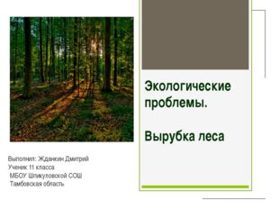 Экологические проблемы. Вырубка леса Выполнил: Жданкин Дмитрий Ученик 11 клас