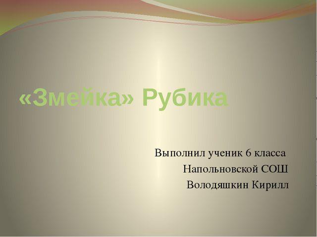 «Змейка» Рубика Выполнил ученик 6 класса Напольновской СОШ Володяшкин Кирилл