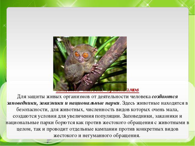 Защита живых организмов Для защиты живых организмов от деятельности человека...
