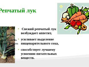 Репчатый лук Свежий репчатый лук возбуждает аппетит, усиливает выделение пище