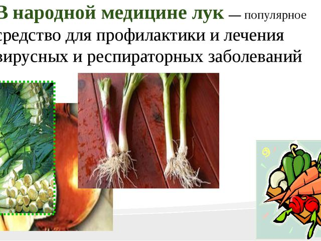 В народной медицине лук — популярное средство для профилактики и лечения вир...