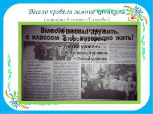 Весело провели зимние каникулы (читайте в газете «Елизово») FokinaLida.75@mai