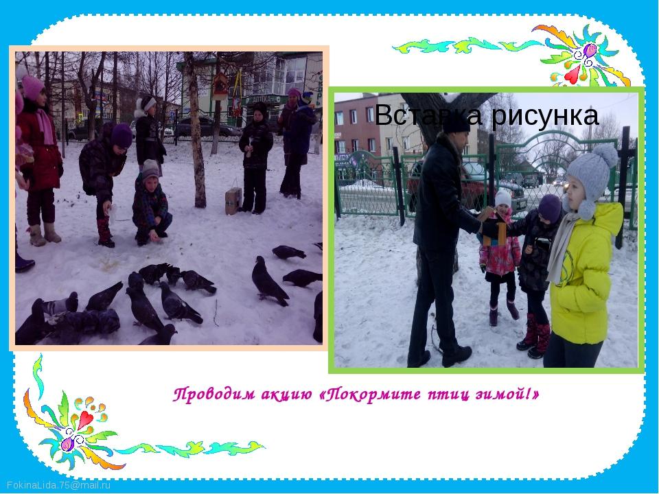 Проводим акцию «Покормите птиц зимой!» FokinaLida.75@mail.ru