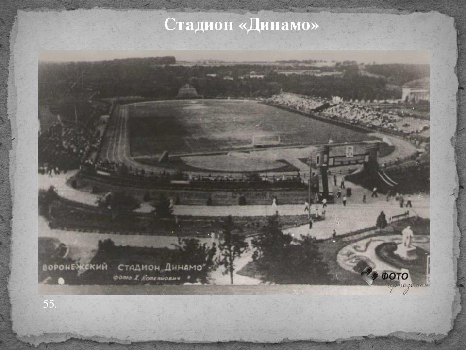 Стадион «Динамо» 55.