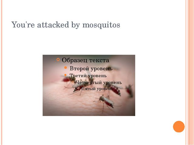 You're attacked by mosquitos