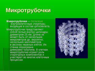 Микротрубочки Микротрубочки—белковыевнутриклеточные структуры, входящие в