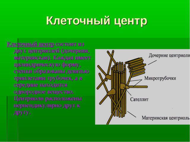 Клеточный центр Клеточный центр состоит из двух центриолей (дочерняя, материн...