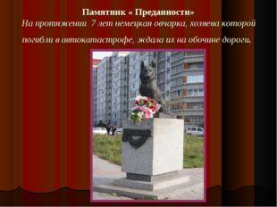 Памятник « Преданности» На протяжении 7 лет немецкая овчарка, хозяева которой