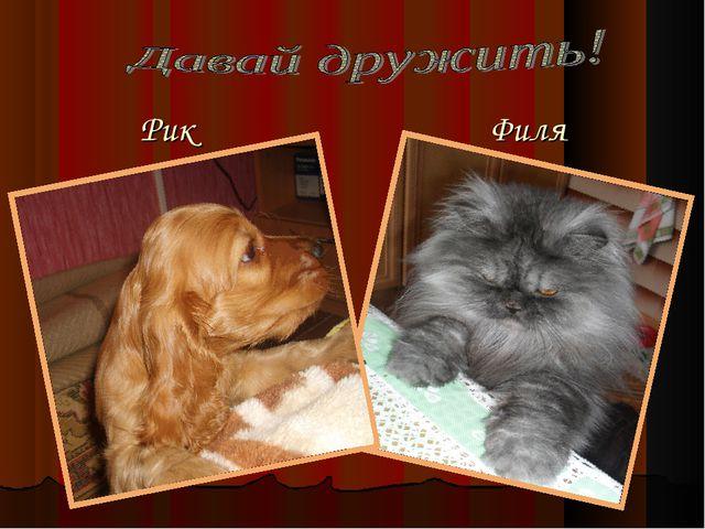 Рик Филя