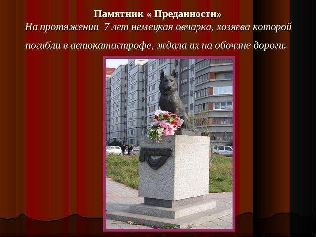 Памятник « Преданности» На протяжении 7 лет немецкая овчарка, хозяева которой...