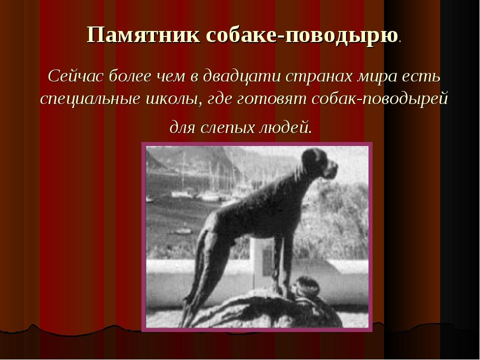 Памятник собаке-поводырю. Сейчас более чем в двадцати странах мира есть специ...