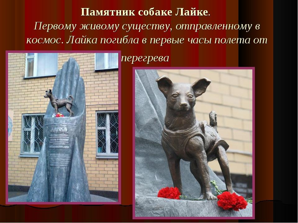 Памятник собаке Лайке. Первому живому существу, отправленному в космос. Лайка...