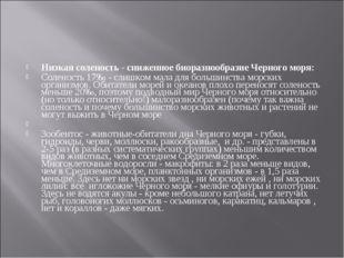 Низкая соленость - сниженное биоразнообразие Черного моря: Соленость 17‰ - сл