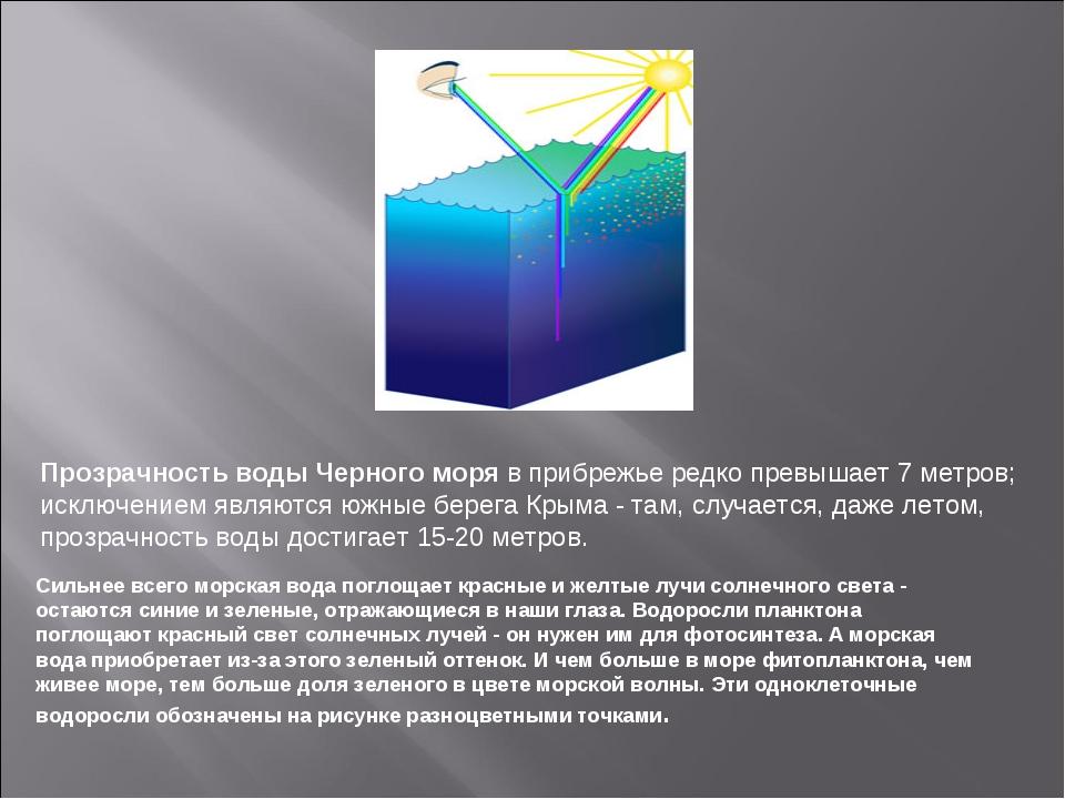 Прозрачность воды Черного моря в прибрежье редко превышает 7 метров; исключен...