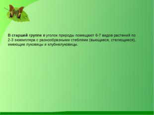 В старшей группе в уголок природы помещают 6-7 видов растений по 2-3 экземпля