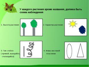У каждого растения кроме названия, должна быть схема наблюдения 1. Высота ра