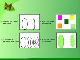 5. Ширина листовой 6. Цвет листовой пластинки пластинки 7. Поверхность 8. Кра