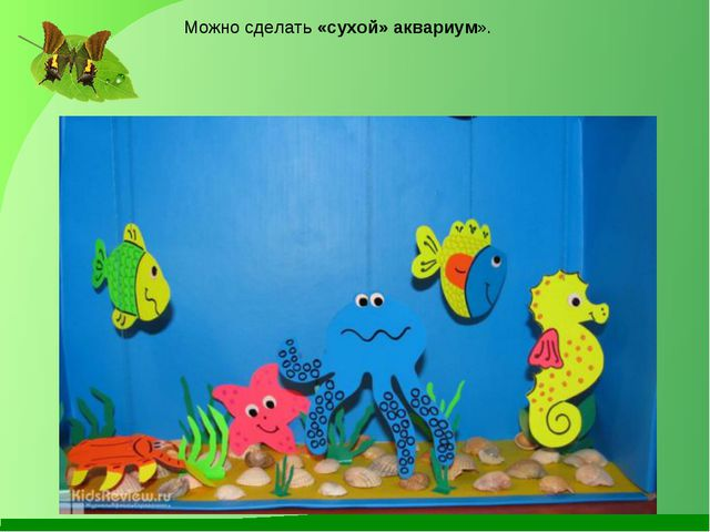 Можно сделать«сухой» аквариум».