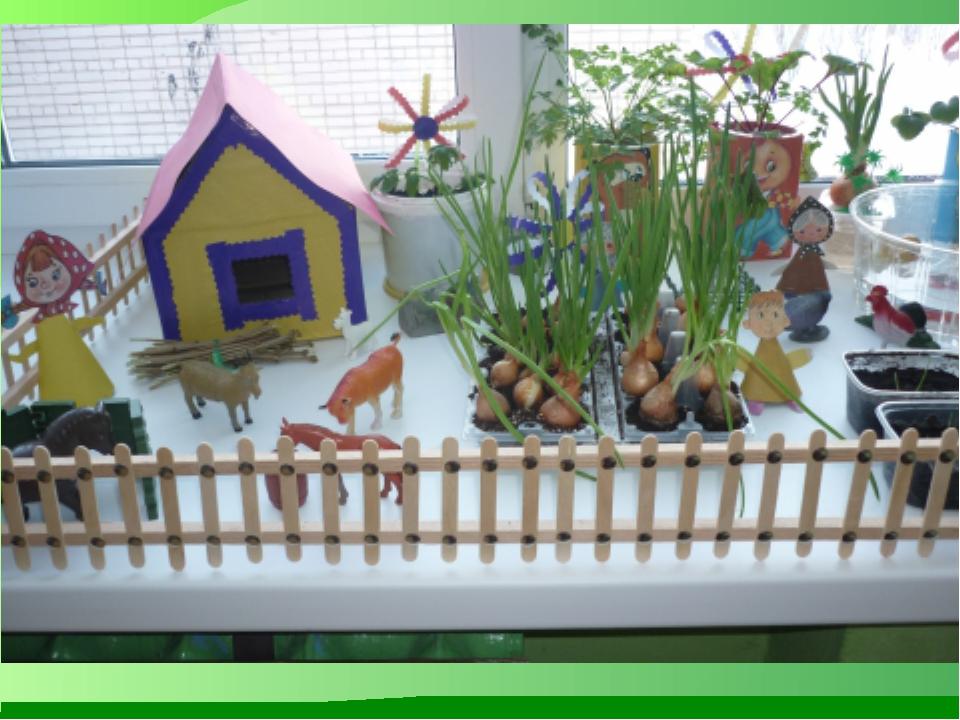 Сад на окне детском саду