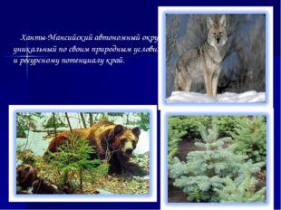 Ханты-Мансийский автономный округ – уникальный по своим природным условиям и