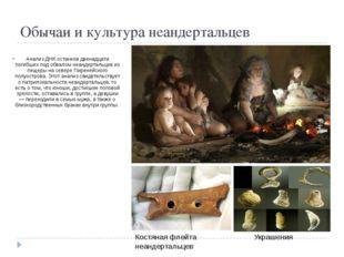 Обычаи и культура неандертальцев Анализ ДНК останков двенадцати погибших под