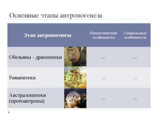 Основные этапы антропогенеза